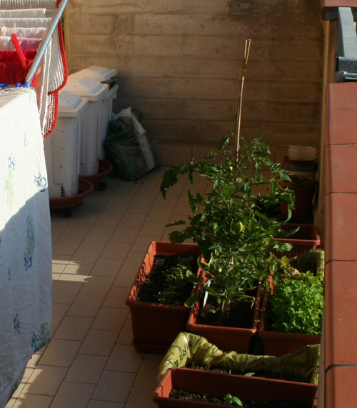 Estate tempo di orto eco eco for Compostiera da balcone