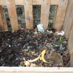 La compostiera si evolve